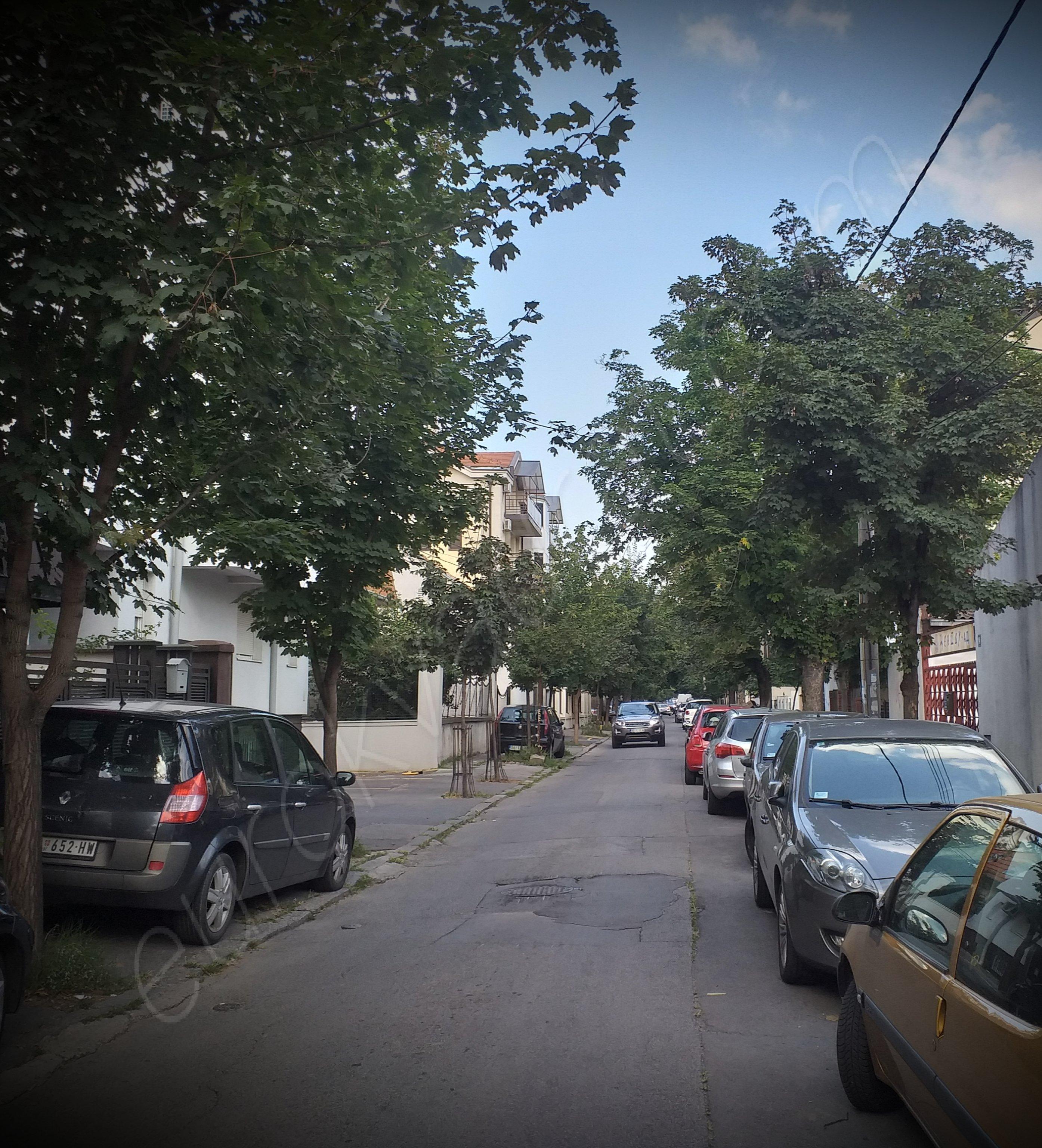 kuća, VOŽDOVAC, LEKINO BRDO, Miklošićeva, 480m2 na 3ara
